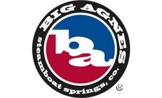 BIG-AGNES